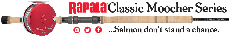 Newsletter-Classic-Series-750 120
